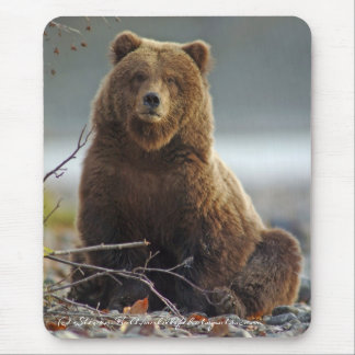 Alaskan Brown Bear in Kenai NWR Mouse Pad