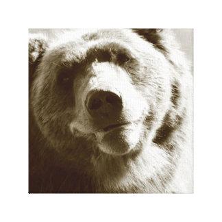 Alaskan Grizzly Canvas Print