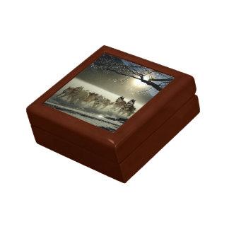 Alaskan Husky Dog Sled Race Gift Box