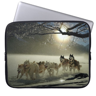 Alaskan Husky Dog Sled Race Laptop Sleeve
