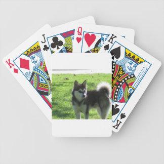Alaskan Klee Kai Dog Bicycle Playing Cards