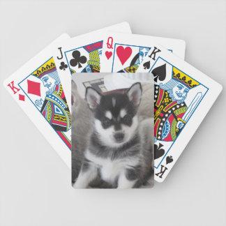 Alaskan Klee Kai Puppy Dog Bicycle Playing Cards