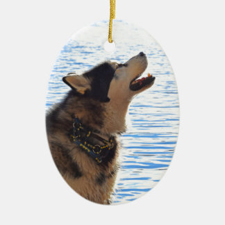 Alaskan Malamute Ceramic Ornament