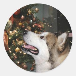 Alaskan Malamute Christmas Classic Round Sticker