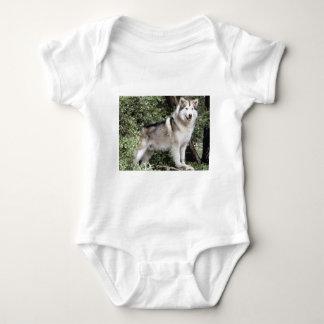 Alaskan Malamute Dog Baby Bodysuit