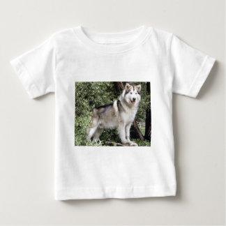 Alaskan Malamute Dog Baby T-Shirt