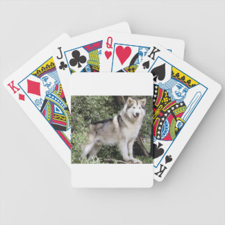 Alaskan Malamute Dog Bicycle Playing Cards