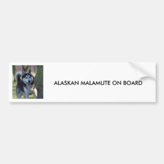 Alaskan Malamute dog, BUMPER STICKER