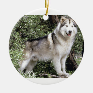 Alaskan Malamute Dog Ceramic Ornament