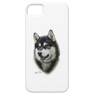 Alaskan Malamute iPhone 5 Case