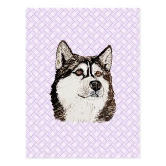 Alaskan Malamute Lavendar Weave Postcard