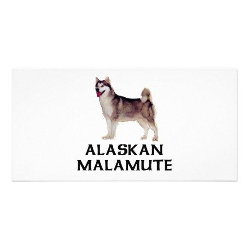 Alaskan Malamute Custom Photo Card