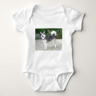 Alaskan Malamute Puppy Dog Baby Bodysuit