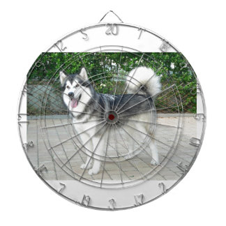 Alaskan Malamute Puppy Dog Dartboard
