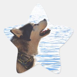 Alaskan Malamute Star Sticker