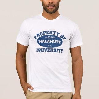 Alaskan Malamute University T-Shirt
