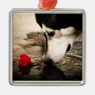 Alaskan Malamute with Red Rose Silver-Colored Square Decoration