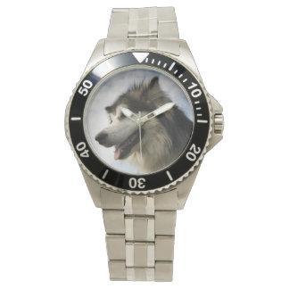 Alaskan Malamute wrist watch