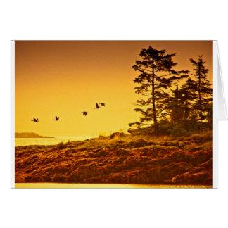 Alaskan Morning Card