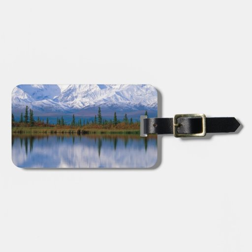 Alaskan Mountians Tags For Bags