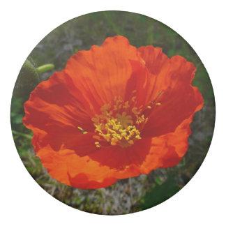Alaskan Red Poppy Colorful Flower Eraser