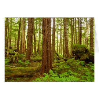 Alaskan Temperate Rainforest Card