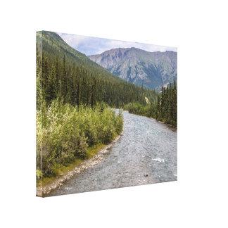 Alaskan Wilderness Canvas Print