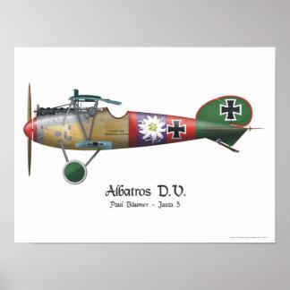 Albatros D.V. ww1 German Fighter Plane Bäumer Poster