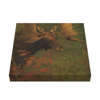 Albert Bierstadt, Study of a moose Canvas Print