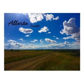 Alberta Canada Postcard