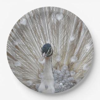Albino Peacock 9 Inch Paper Plate