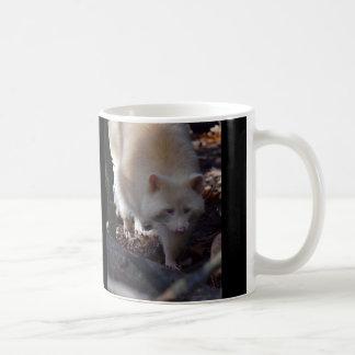 Albino Raccoon Mug