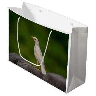 Albino Robin in Crown Point Large Gift Bag