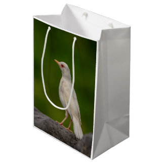 Albino Robin in Crown Point Medium Gift Bag