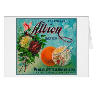 Albion Brand Citrus Crate Label Card