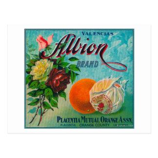 Albion Brand Citrus Crate Label Postcard