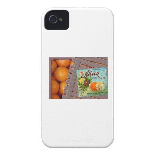 Albion Oranges Fruit Crate Label iPhone 4 Case-Mate Case