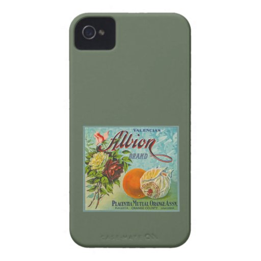 Albion Oranges Fruit Crate Label Blackberry Bold Cover