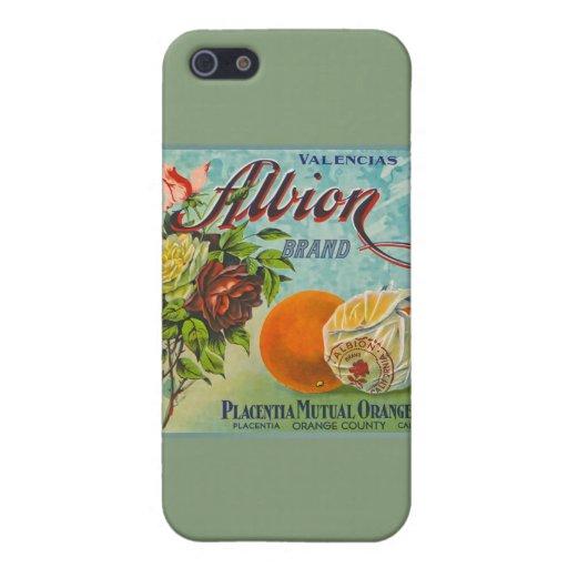 Albion Oranges Fruit Crate Label iPhone 5 Case