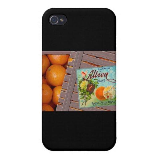Albion Oranges Fruit Crate Label iPhone 4/4S Case