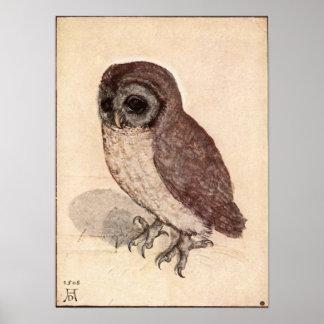 Albrecht Durer Little Owl Poster