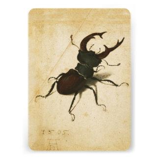 Albrecht Durer Stag Beetle Renaissance Vintage Art Personalized Announcements