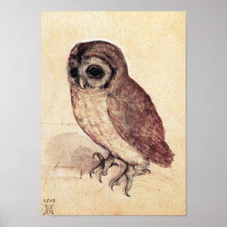 Albrecht Durer The Little Owl Poster