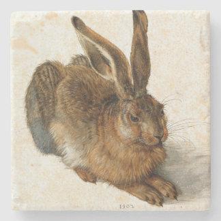 ALBRECHT DÜRER - Young hare 1502 Stone Coaster