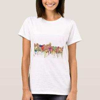 Albuquerque New Mexico Skyline SG Faded Glory T-Shirt
