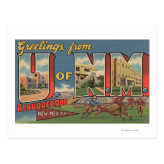 Albuquerque, New Mexico - University of NM Postcard