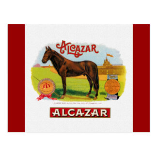 Alcazar the Race Horse Postcard