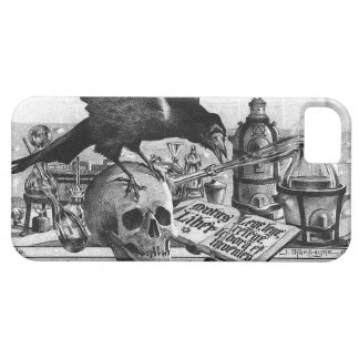Alchemy Laboratory Raven and Human Skull iPhone 5 Cases