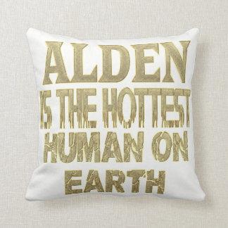 Alden Pillow