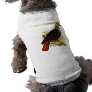 Alectroenas Nitidissima Doggie Ribbed Tank Top Doggie Tee Shirt